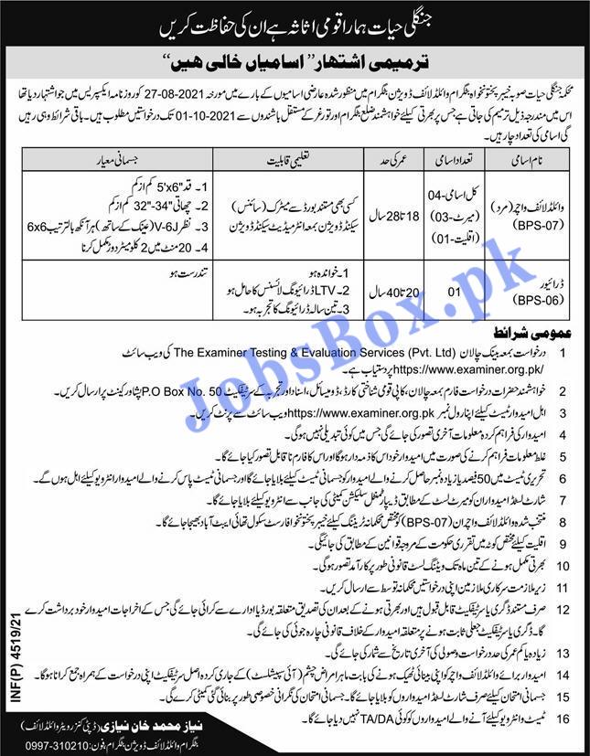 Wildlife Department KPK Battagram Wildlife Division Jobs 2021 – examiner.org.pk