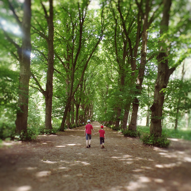 Boys walking along a tree lined path holding hands. shot from behind