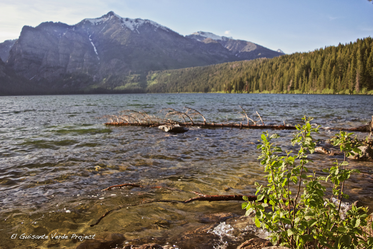 Phelps Lake - Grand Teton National Park por El Guisante Verde Project