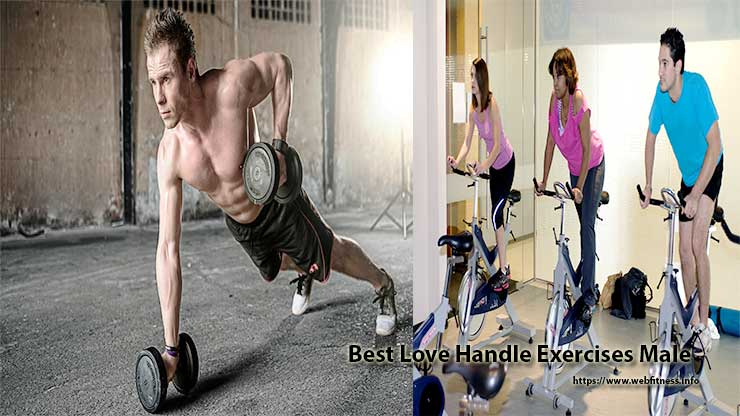 Best Love Handle Exercises Male- How to Get Rid of Your Love Handles