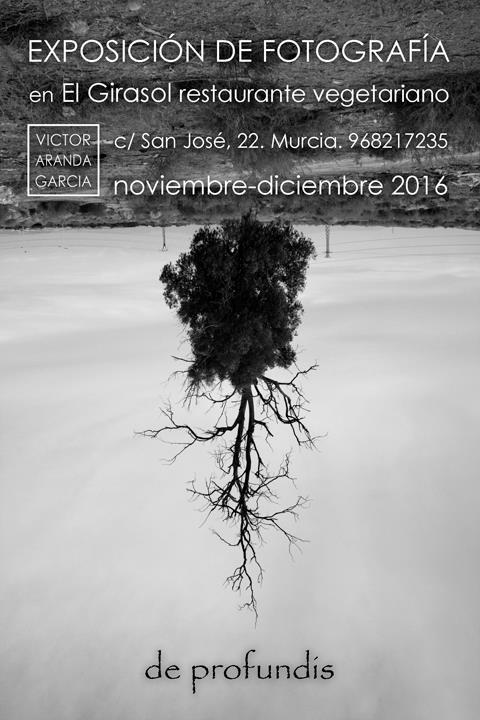 exposicion,fotografia,murcia,el_girasol,arte,obra,venta
