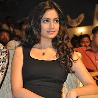 Kriti kharbanda at ongole githa  audio launch