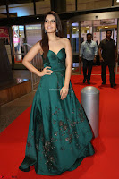 Raashi Khanna in Dark Green Sleeveless Strapless Deep neck Gown at 64th Jio Filmfare Awards South ~  Exclusive 124.JPG