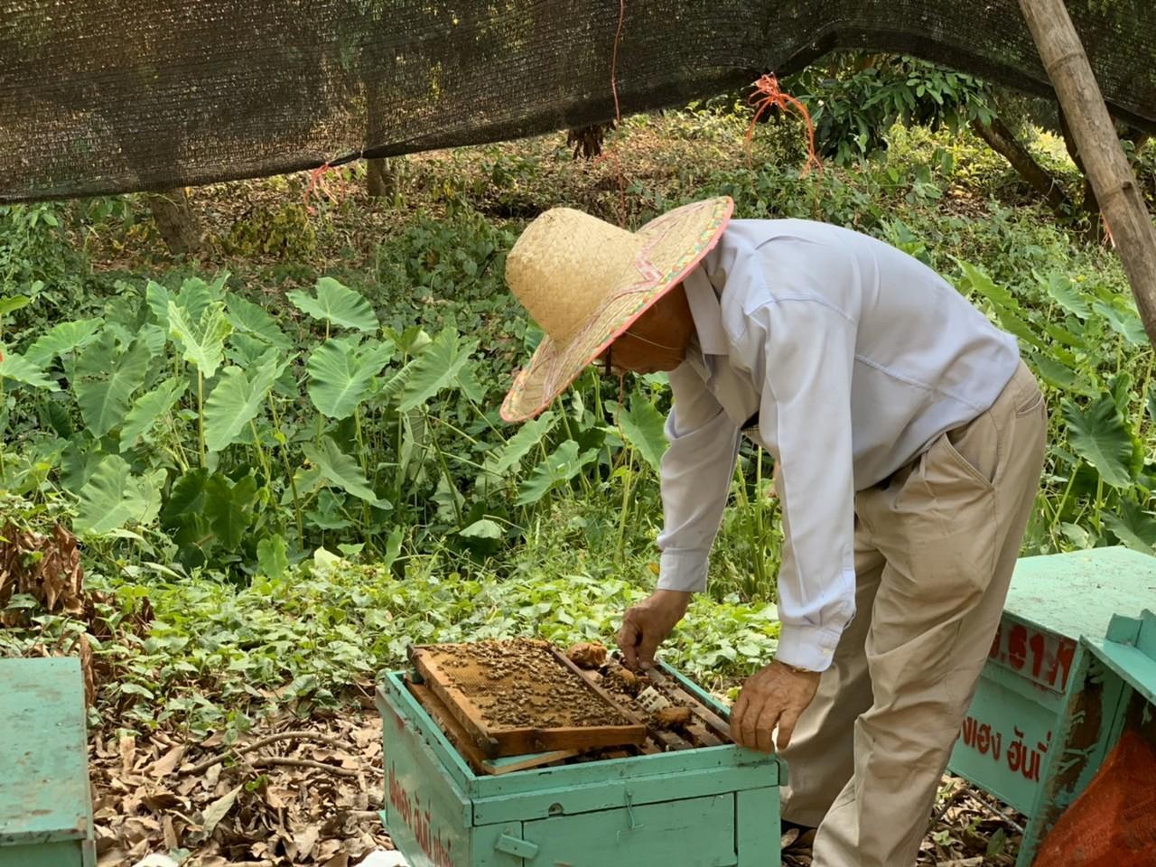 滿誠蜂蜜 好品質得來不易 滴滴都是堅持和用心