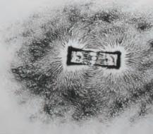 Pola Medan Magnet Batang