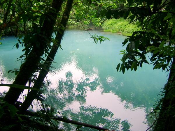 Laguna Azul (Parque Nacional Volcán Tenorio, Costa Rica)