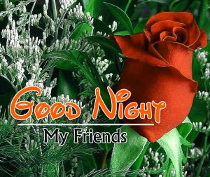 Beautiful Good Night 4k Images For Whatsapp Download 55
