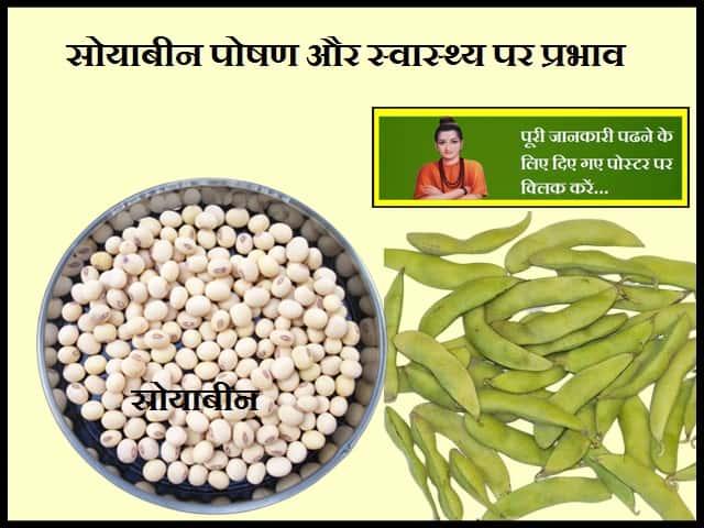 Soybeans Nutrition and Health Effects-सोयाबीन पोषण और स्वास्थ्य पर प्रभाव