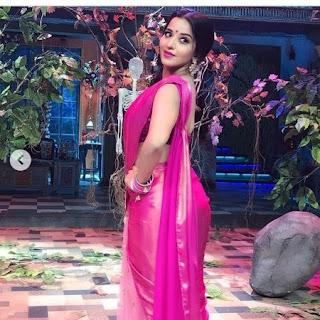 Monalisa Bhojpuri Actress pink saree photo