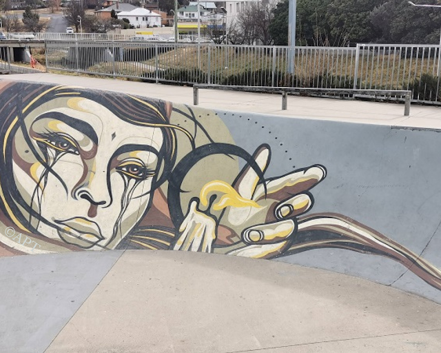Cooma Street Art | Mural by Mike Shankster