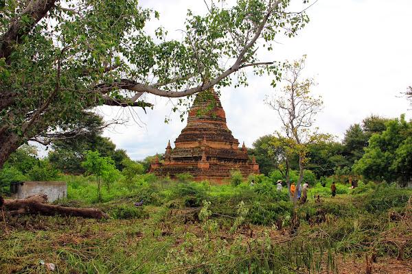 Templos en la jungla de old Bagan - Myanmar