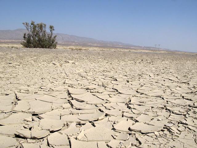 Deserto Kara kum - Ásia