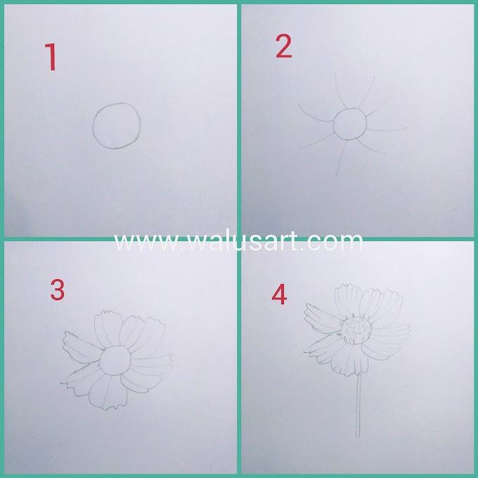 Cara Menggambar Bunga Cosmos