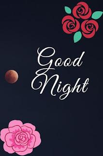 rose flower good night image