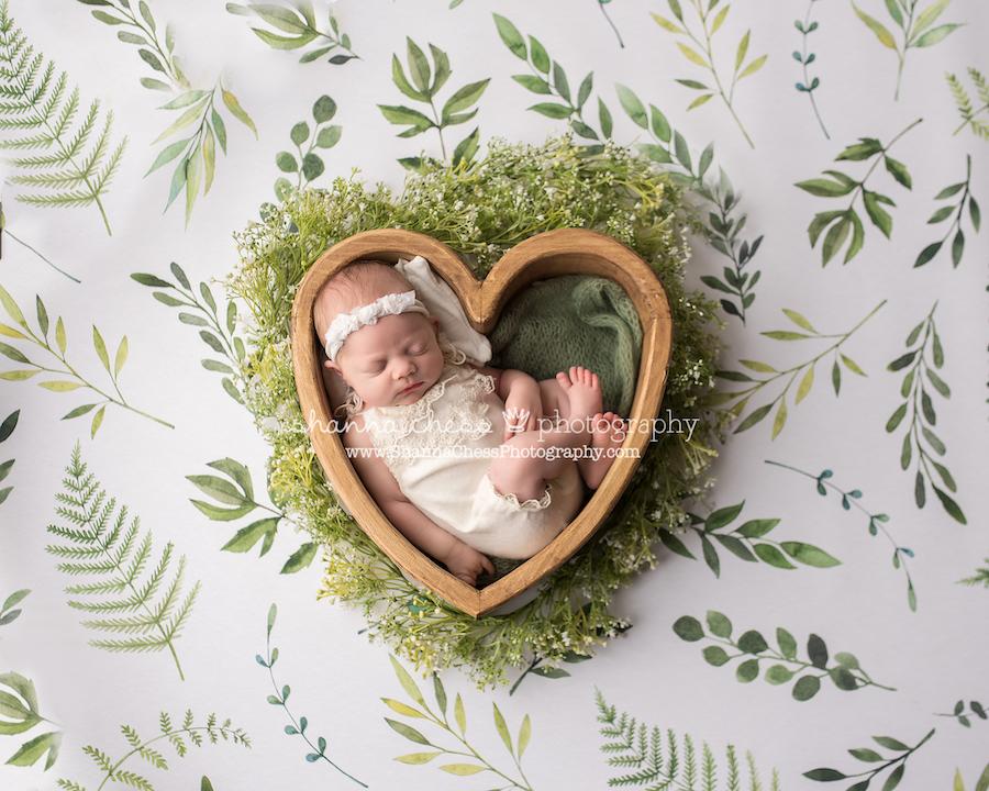 eugene studio newborn photographer