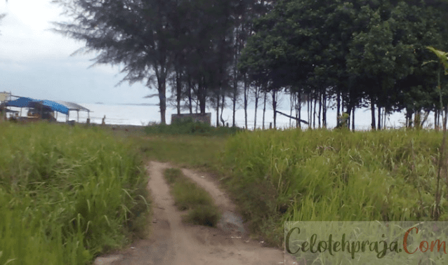 Daftar Tempat Wisata Nias Utara Menarik Mulai Dari Pantai, Puncak, Air Terjun Hingga Danau