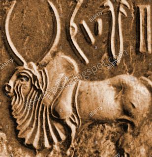 animal seals of harappan civilization