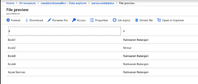 Azure Data Lake Storage File preview - contains SharePoint Data