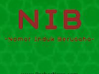 Nomor Induk Berusaha (NIB) Berfungsi Sebagai SIUP, TDP, API dan Kepabenanan