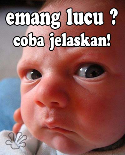 Komen Gambar Gokil : komen, gambar, gokil, Gambar2, Komentar, Facebook, Paling, Gokil, Kochie