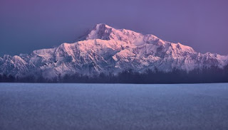 Denali Alaska - Photo by Landon Arnold on Unsplash