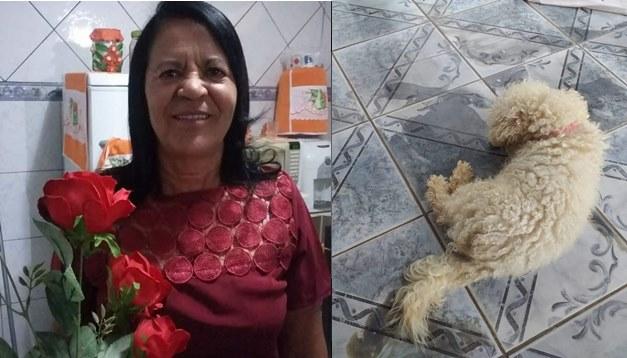 Bahia: Cachorro morre horas depois do óbito da dona em Conceição do Coité