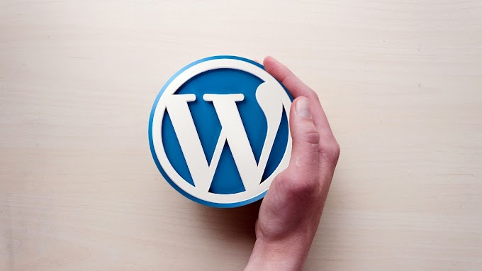 Your Content Marketing Firm Could Benefit From WordPress Developers: Read On To Know How