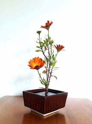Ikebana-shoka-wabisabi-escoladikebana