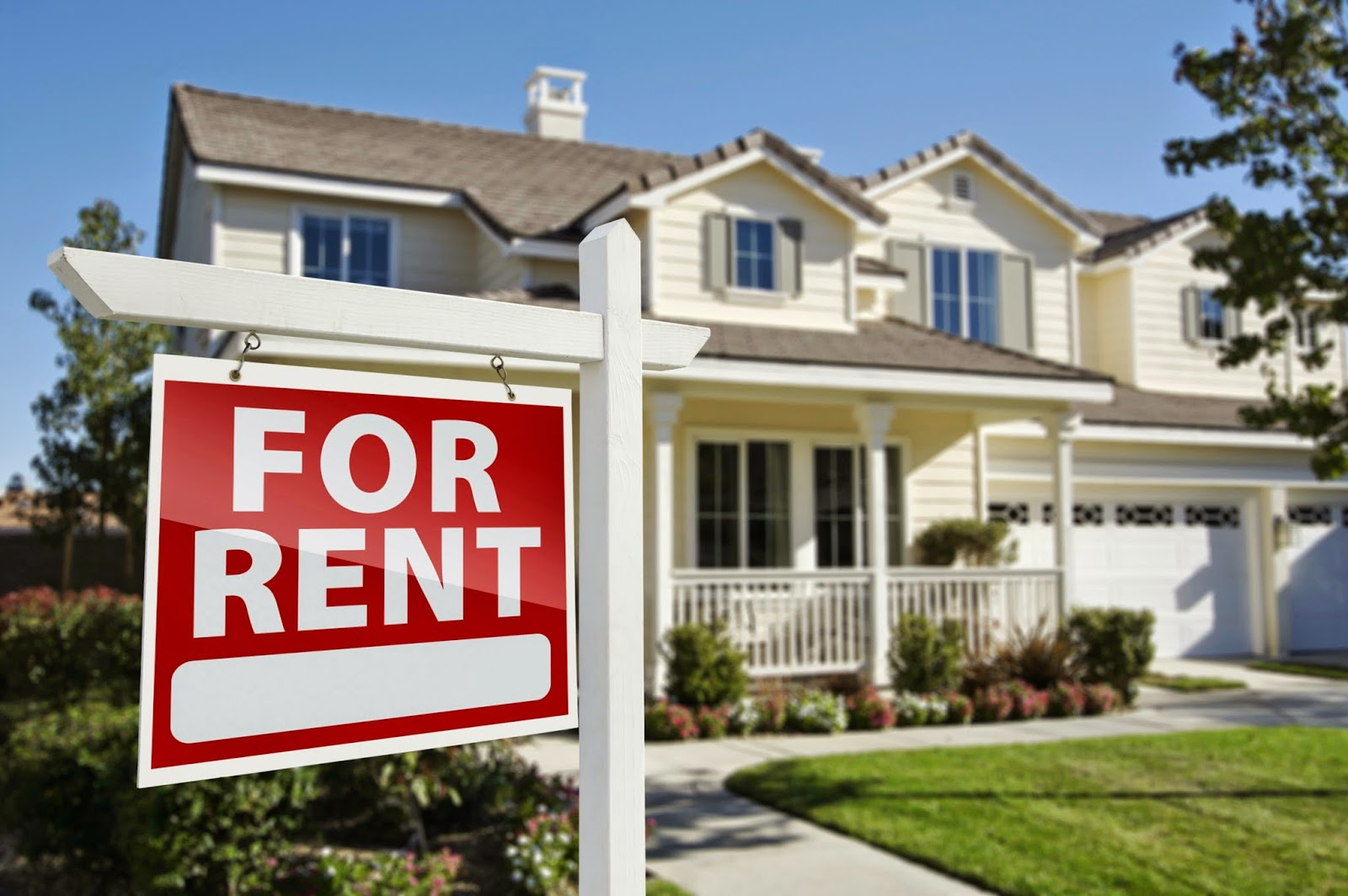 What You Should Know When Looking For A House For Rent