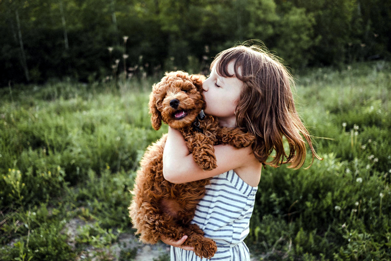 How to Introduce Your Kids to a New Pet
