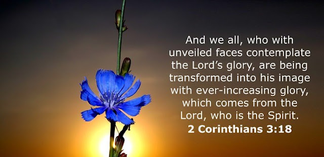 And we all, who with unveiled faces contemplate the Lord's glory, are being transformed into his image with ever-increasing glory, which comes from the Lord, who is the Spirit.