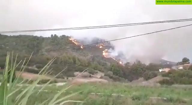 Optimismo hoy sábado con la evolución del incendio en Garafía