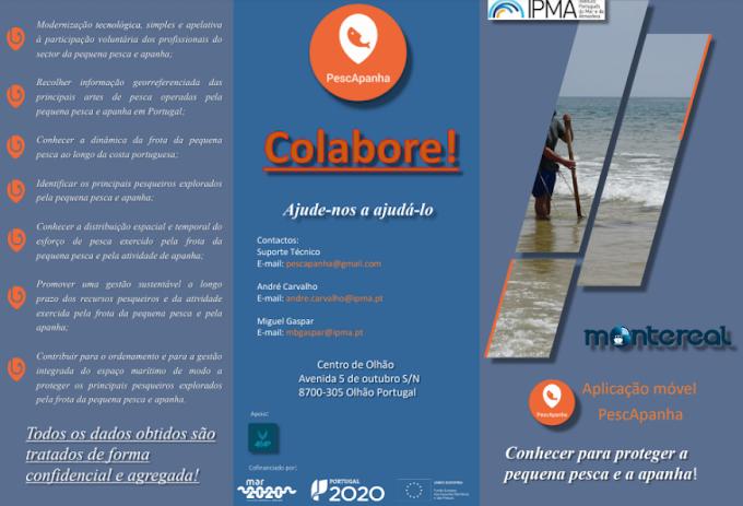 """IPMA lança aplicação """"PescApanha"""" para dispositivos móveis com sistema Android, visando conhecer mais para proteger melhor a pequena pesca e a apanha"""
