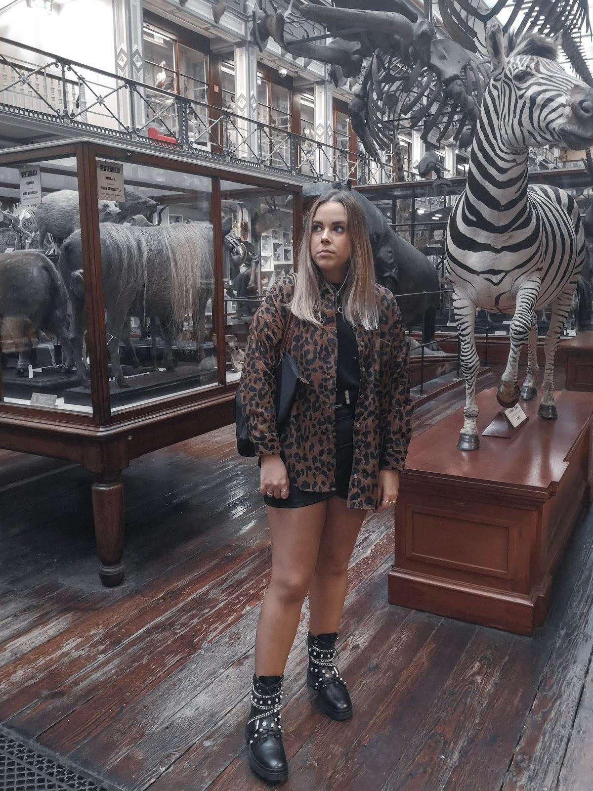 Museo de Historia Natural Dublin