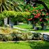 Ανοιχτός για το κοινό ο Βοτανικός κήπος, μία όαση στο κέντρο της Αθήνας