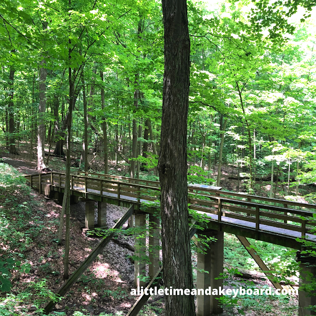 A bridge crosses a stunning ravine at Tekakwitha Woods Forest Preserve