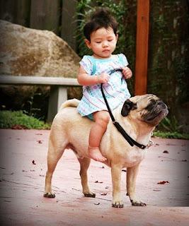 यह Funny Images  बताती हैं की जब बच्चे मस्ती के मूड में होते हैं तो बह किस हद तक जा सकते हैं. और मस्ती-मस्ती में यह किस तरह की हरकतें करते हैं. तो दोस्तों यह हैं कुछ ऐसी मजेदार तस्वीरें जिन्हें देख आप अपनी हंसी नहीं रोक पाएंगे.