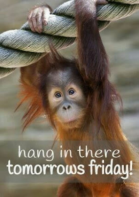 Positive Thursday meme, funny thursday meme, monkey funny meme