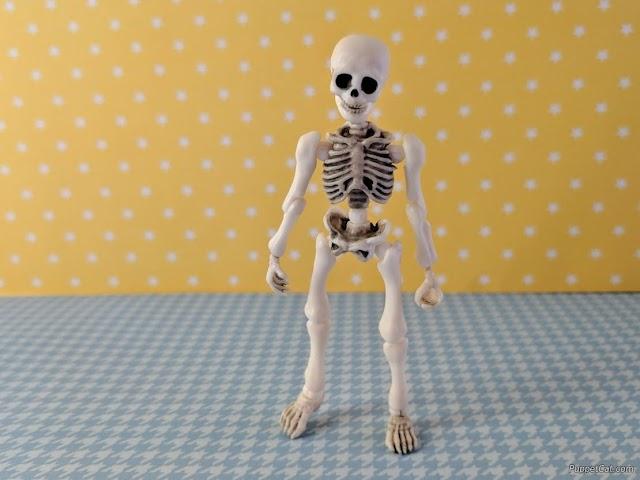 Обзор миниатюрного шарнирного скелета Mr. Bones