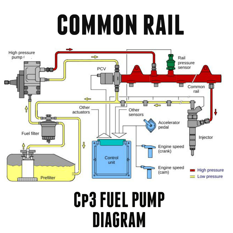 chevy fuel system diagram toxic diesel performance : duramax cp3 common rail fuel pump