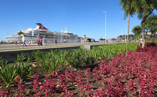 flowers and the cruise ship