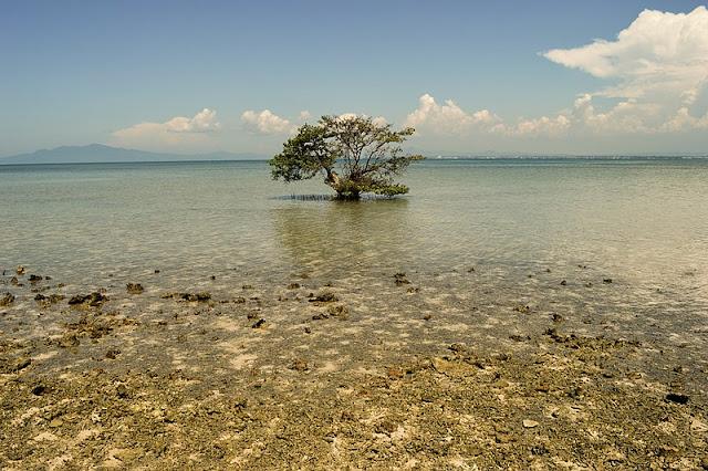 Fenomena Alam Menghilangnya Sebuah Pulau