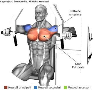 Üst vücut hareketleri