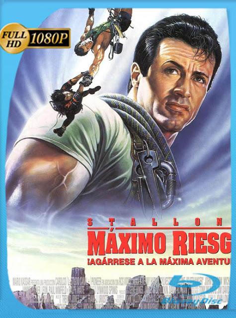 Riesgo Total (1993) HD [1080p] Latino [GoogleDrive] SilvestreHD