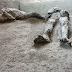 Πομπηία - Συγκλονιστικό: Βρήκαν τα λείψανα ενός πλούσιου και ενός σκλάβου που «σκότωσε» o Βεζούβιος
