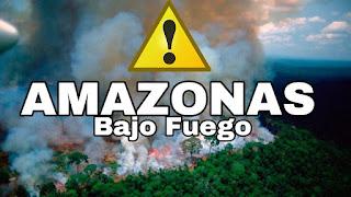 La recuperación del Amazonas tardara 200 años.