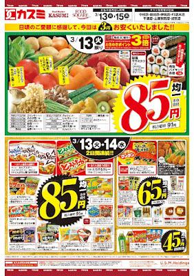 【PR】フードスクエア/越谷ツインシティ店のチラシ3月13日号