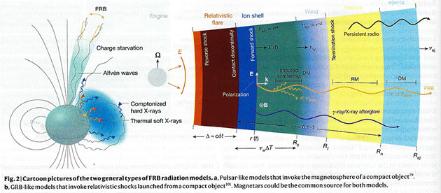 Two models of FRB generation (Source: B. Zhang, Nature, 5 Nov 2020)