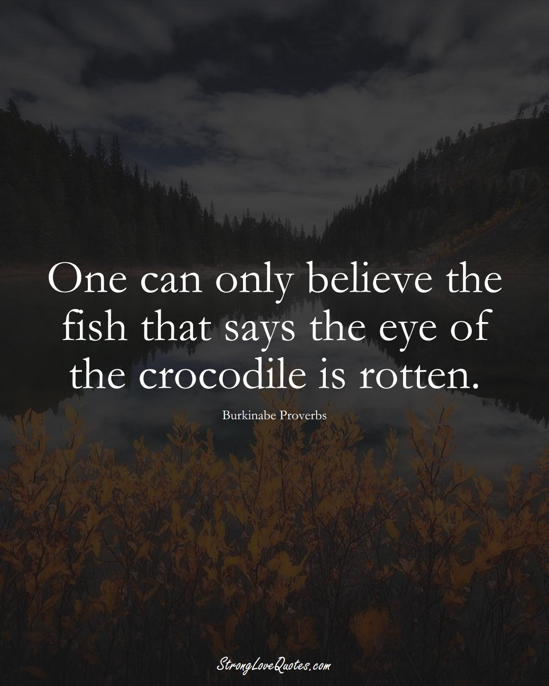 One can only believe the fish that says the eye of the crocodile is rotten. (Burkinabe Sayings);  #AfricanSayings