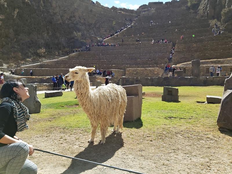 Ollantaytambo - Vale Sagrado, Cusco